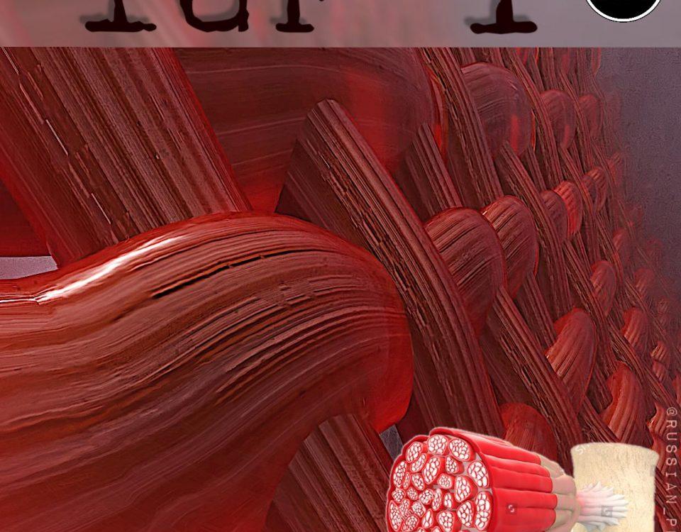IGF-1 (ИФР-1, Инсулиноподобный Фактор  Роста 1)