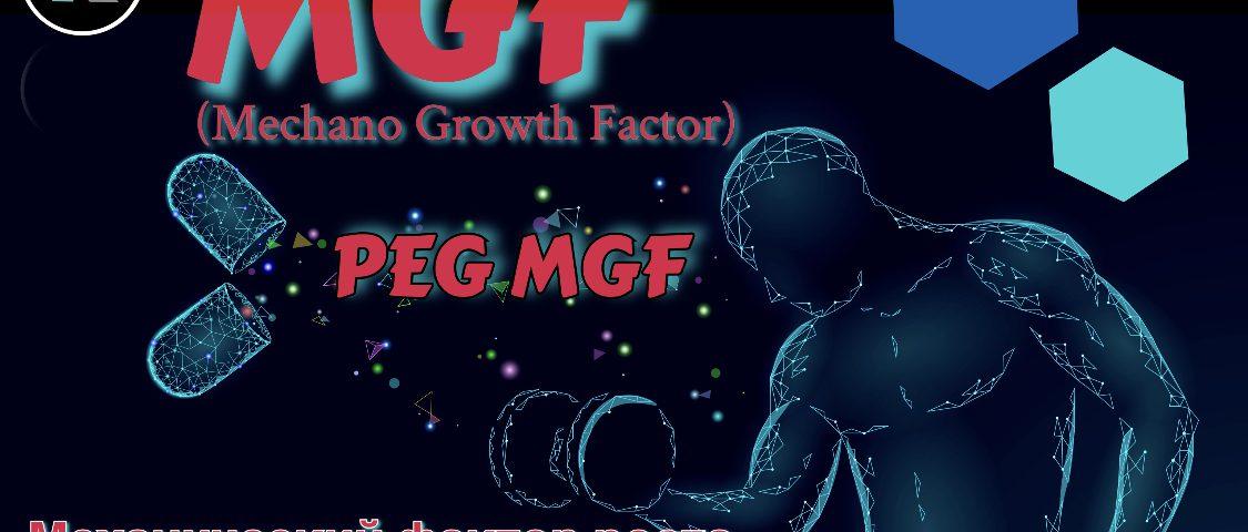 MGF и PEG-MGF: Механический Фактор Роста и его биоактивность