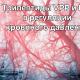Артериальное давление и лактотрипептиды